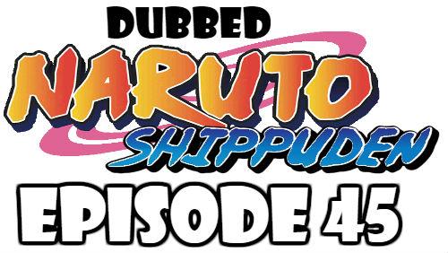 Naruto Shippuden Episode 45 Dubbed English Free Online